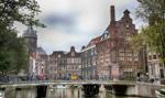 Holandia: w sondażach prowadzi Partia na rzecz Wolności Wildersa