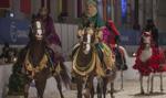 Rzecznik rządu: Dni Konia Arabskiego - we właściwym terminie