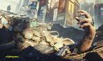 CD Projekt udostępnił drugi zestaw poprawek do