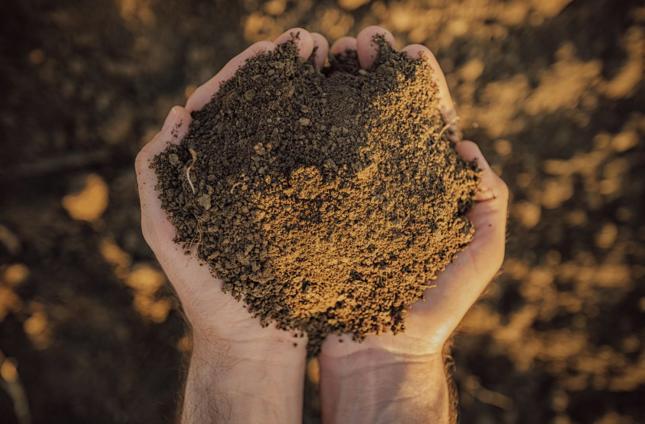 Miastowy nie kupi już bez przeszkód ziemi rolnej