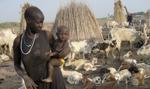 Wojna o pokój w Sudanie Południowym