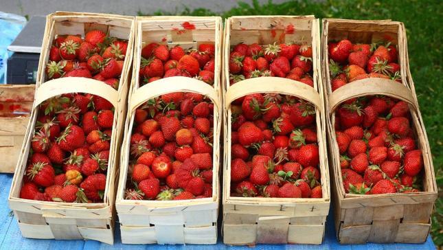 Rosjanie kupują polskie truskawki