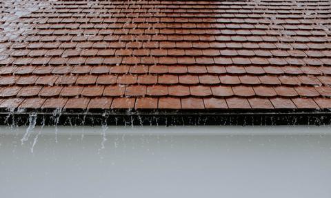 """Polacy chcą łapać deszcz. Już 6 tys. z wniosków w programie """"Moja woda"""""""