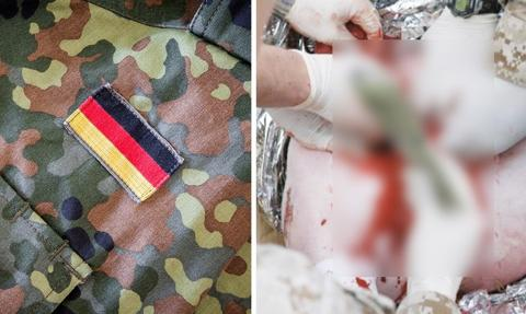 PETA apeluje do Niemiec o zaprzestanie okaleczania świń podczas szkoleń Bundeswehry