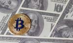 Bitcoin powyżej 10 000 dolarów. Halving coraz bliżej
