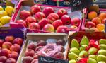 Polska firma zainwestuje w rosyjskie warzywa
