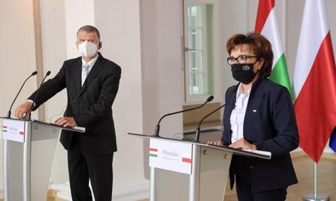 Witek: Polska i Węgry nie zgadzają się na powiązanie finansowania z budżetu UE z praworządnością