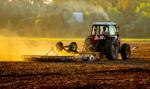 ARiMR: przyjmowanie wniosków o pomoc w związku z suszą od 3 października