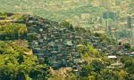 Walka z wirusem Zika w Ameryce Południowej