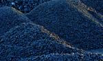 UOKIK sprawdził jakość węgla na składach. Często nie spełniał wymagań