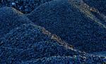 W Chinach już szósta sesja ze spadkami notowań węgla