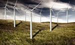 70 proc. farm wiatrowych przyniosło straty