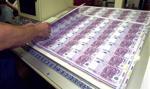 Eksperci: ws. euro trzeba informować, z przyjęciem spieszyć się powoli