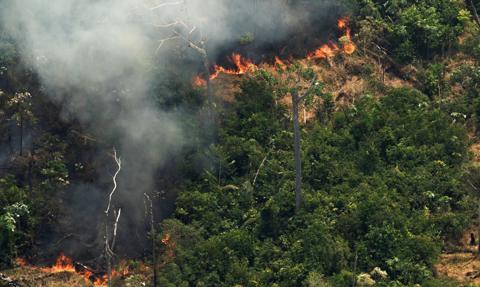 Brazylia debatuje nad płonącą Amazonią