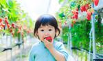 W Japonii odnotowano najniższą liczbę dzieci w historii prowadzonych statystyk