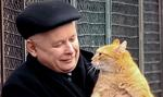 Kaczyński: Niech futra przejdą do historii