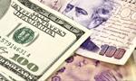 Goldman Sachs: euro będzie tanieć, dolar drożeć, a złoty pozostanie stabilny