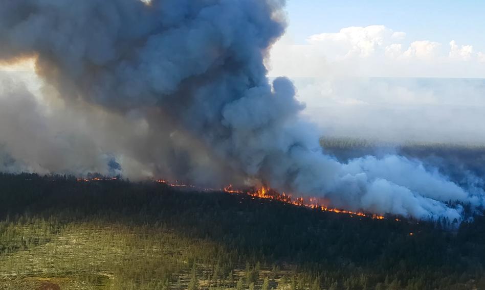 Rozległe pożary lasów w Rosji. Na Syberii trzeba ewakuować wsie