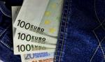 Fiskus: trzeba zgłosić przewóz przez granicę 10 tys. euro lub więcej