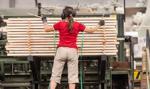 Work Service: 39 proc. pracodawców planuje rekrutować Ukraińców