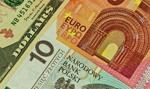 Kurs euro przestał spadać. Dolar wrócił do poziomów z marca