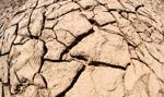 Izby Rolnicze: nowy system szacowania suszy budzi wiele wątpliwości