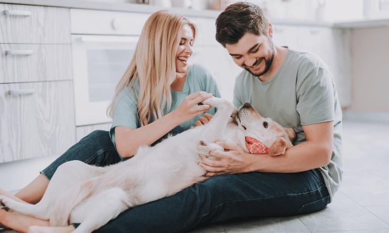 BNP Paribas kredyt hipoteczny – warunki?
