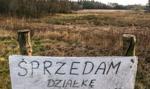 GUS: ożywienie na rynku działek. Polacy w rok wydali na nieruchomości 145 mld zł