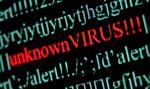 UE może już nakładać sankcje za cyberataki