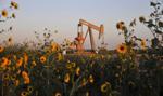 W USA spadły zapasy ropy i słabną napięcia w handlu z Chinami - to wspiera ropę