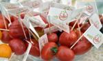 Bronisze: coraz większa oferta warzyw importowanych