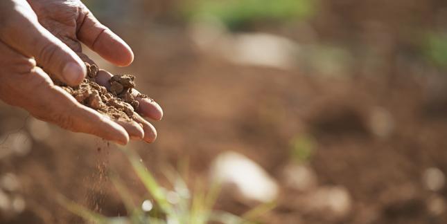 Nowe zasady dla rolników ureguluje Ministerstwo Środowiska