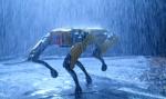 Spot od Boston Dynamics wchodzi na rynek tanecznym krokiem