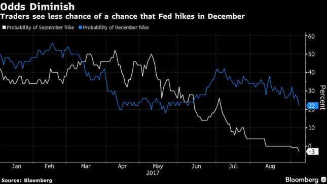 Implikowane prawodpodobieństwo podwyżki stóp procentowych w grudniu (niebieska linia) i wrześniu (biała linia).