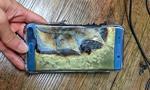 Płonące Note 7 nie zaszkodziły Samsungowi