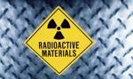 Białoruś chce wymiany korpusu reaktora, który upadł
