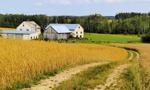 Soboń: Przekształcenie użytkowania wieczystego we własność gruntu stanie się z automatu