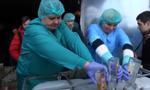 Największa publiczna utylizacja alkoholu w historii Ukrainy. Wylano alkohol wart 650 tys. zł