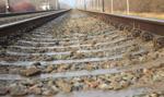 Torpol chce utrzymać udział na rynku projektów kolejowych na poziomie nie mniej niż 15 proc.