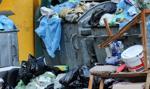 Poznańska spalarnia śmieci rozpoczyna produkcję prądu