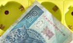 Podwyżki cen prądu o 8 proc. dla gospodarstw domowych w projekcji NBP