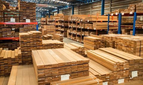 Przemysł drzewny: Czeka nas katastrofa, a eksport drewna pogłębi problemy