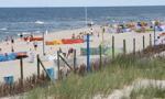 Cztery kąpieliska nad Zatoką Gdańską zamknięte z powodu sinic
