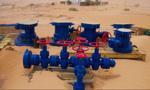 Serinus wstrzymał wydobycie na polu Sabria w Tunezji w związku z niepokojami społecznymi