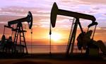 Ropa w USA najwyżej od 4 miesięcy