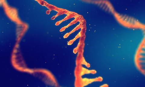 Eksperci: Szczepionki mRNA bezpieczne, nie modyfikują DNA