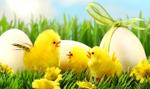 Polska rodzina wyda na Wielkanoc średnio 400 zł. To dwa razy mniej niż na Boże Narodzenie