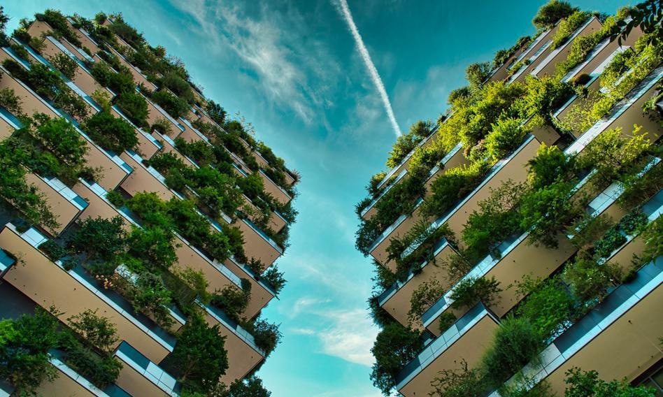 Zielone dachy, domy na drzewach, drewno zamiast betonu. Tak buduje się ekodomy