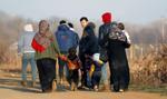 Nowa fala imigrantów napływa do Europy