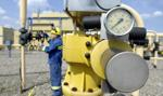 Wicepremier Ukrainy: Możliwe wznowienie zakupów gazu od Rosji, ale pod warunkiem